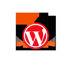 Wordpress Experte